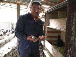 代表の内田さん。鶏たちの世話と採卵は全て手作業でやっています。